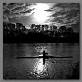 Lone Rower.jpg