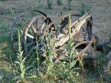 Wagonwheels.jpg