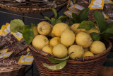 Lemons_D7M2782 copy.jpg