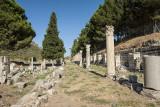 Ephesus Ruins_D7M4211s.jpg