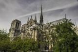 Notre Dame_D7M6569s.jpg