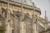 Notre Dame_D7M6563s.jpg