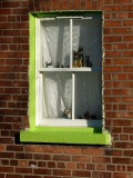 Cats in a green window