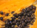 Papaya seed detail