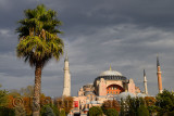 Ancient Hagia Sophia with palm tree and clouds in Istanbul Turkey