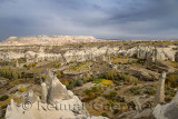 Vineyards and orchards among Fairy Chimneys in Love Valley Goreme National Park Turkey