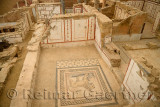 Frescoes and lion mosaic tile floor of a Slope House ruin on Curetes street of ancient Ephesus Turkey