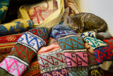 Feral kitten sleeping on hand crafted knitted socks in outdoor shop in Sirince Turkey