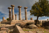Doric column ruins of the temple of Athena with Quince tree at Assos Behramkale Turkey