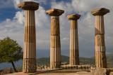 Quince tree and Doric column ruins of the temple of Athena over the Aegean Sea coast at Assos Behramkale Turkey