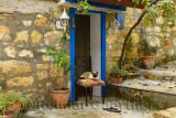 Siamese cat sitting on chair in doorway of stone house in hillside village of Yesilyurt Turkey