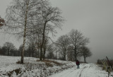 a grey winter day in Alsace.