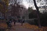 Parc Monceau - 9559