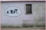 Kfar-Masarik_5-11-2005 (26).jpg