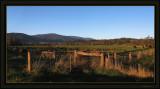 Along the Warburton Trail near home