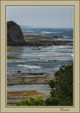 Bass Coast