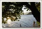 Karinthië Milstätter See