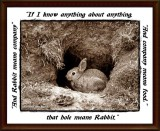 That hole means Rabbit...