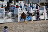 2013 Homestead Rodeo