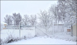 First snow 121129