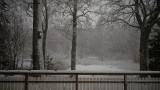 vinter12041401.jpg
