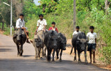 Childrens Transportation