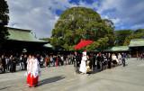 Wedding Procession on Imperial Shrine
