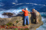 Point Lobos Ledge