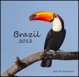 brazil_2012