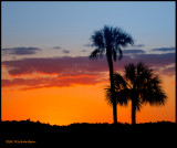 canoe park sunset.jpg