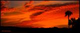 canoe park sunsetpano.jpg