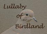 Lullaby of Birdland Video