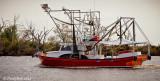 Shrimp Boat October 23