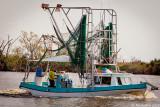 Shrimp Boat October 24