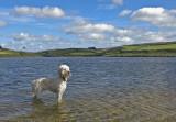 Cornwall-Portreath 2012_122409_7934.jpg