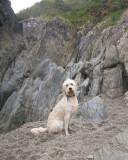 Cornwall-Portreath 2012_122509_7865.jpg