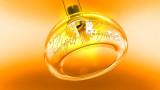 One-ring-light.jpg