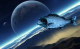 Space-fish.jpg