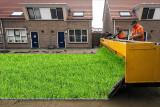 Auto-Grass.jpg
