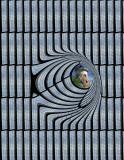 quantum-windmill.jpg