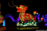 Dallas' Chinese Lantern Festival