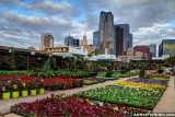 Dallas skyline behind Ruibal's Plants of Texas