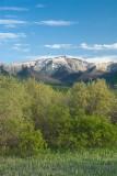 Eklutna Flats Spring