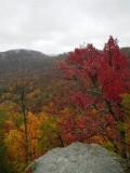 Anglin Falls / Berea Woods - October 28, 2012
