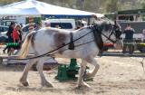 One horsepower Merry-go-round.