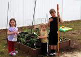 Grammy's garden...planting time!