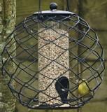 A Starling Proof Bird Feeder?