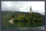Bled the island