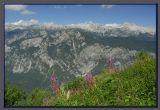 The Slovenian Alps