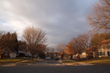 Early morning light in our neighborhood